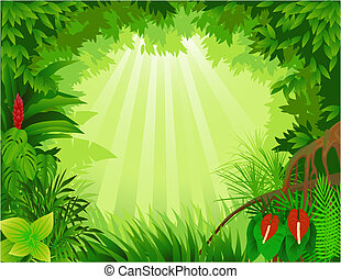 skog, bakgrund