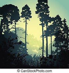 skog, illustration, morgon