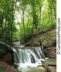 skog, vattenfall
