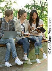 skoncentrowany, studenci, grupa, multiethnic, młody