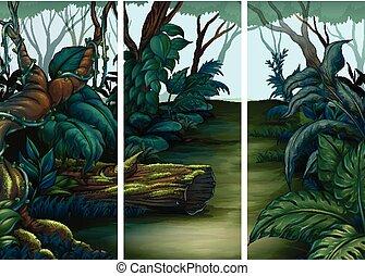 skov, scener, hos, lots, i, træer