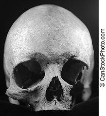 skrämmande, svart, mänsklig skalle, hemsökt av spöken
