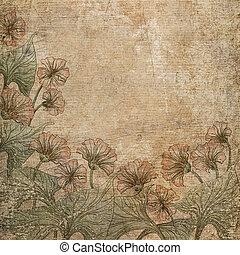 skrapet, bakgrund., blomningen, papper, gammal