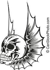 skrzydełka, czaszka