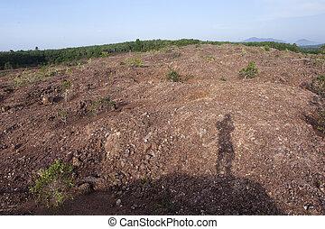skugga, av, a, rock bergsbestigare, på, a, klippa