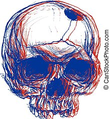 Skull 3D - Skull drawing line work in conceptual 3D. Vector...