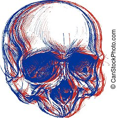 Skull drawing line work in conceptual 3D. Vector for use.