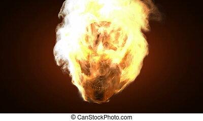 skull., alpha, brûlé, emmêlé
