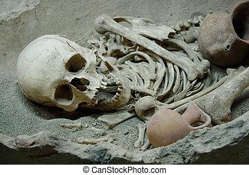 Skull and bones - Ancient human's skull and bones in...