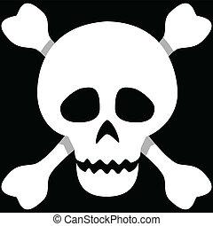 Illustration of a human skull on a black background.