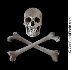 Skull and Crossbones SHHD - The traditional danger and...