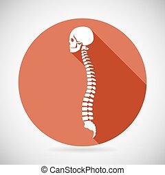 Skull and Spine Icon Symbol Concept Flat Design Vector Illustration