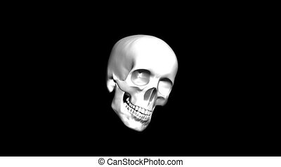 Skull animation with alpha loop