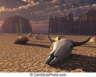Skull in desert