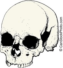 skull in profile - skull drawn as tattoo in profile isolated...