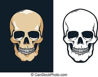Skull in retro vintage style