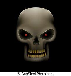 skull in the dark - Realistic illustration of human skull...