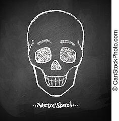skull., lavagna, disegno
