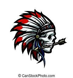Skull of an Indian warrior.