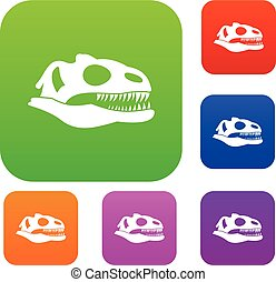 Skull of dinosaur set collection