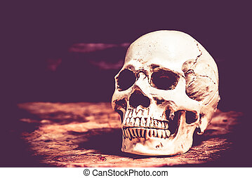 Skull of halloween party decoration