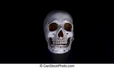 skull on a black background. 4k, dolly shot, defocusing,...