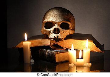 Skull On Books