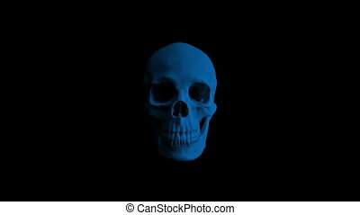 Skull Opens Mouth Eats Camera - 4 Versions - Human skull...