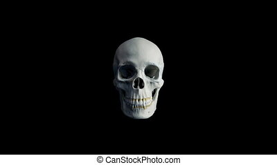 Skull Opens Mouth Eats Camera POV - 4 Versions - Human skull...