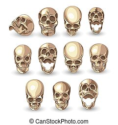skull set on white background . vector