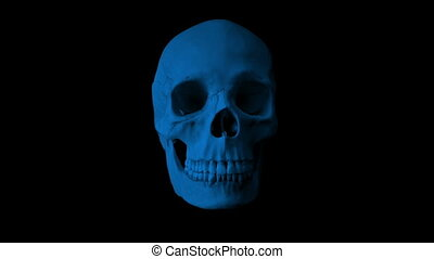 Skull Talking In The Dark Loop - Front View - Front view of...