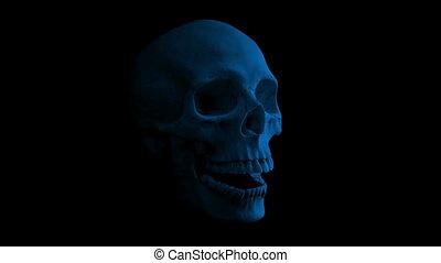 Skull Talking In The Dark Loop - Side View - Side view of...