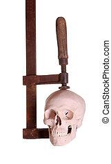 skull under pressure in clamp