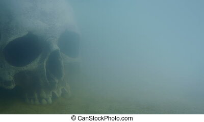 Skull Under The Sea - Passing an old skull underwater on the...