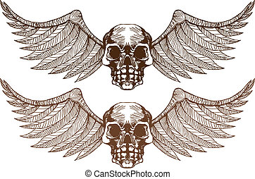 Skull Wings - Skull Wing image isolated on a white...