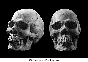 Skull with black and white image