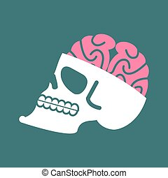 Skull with brains isolated. head of human skeleton and brain. Anatomy illustration