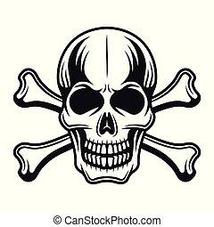 Skull with crossbones vector detailed illustration