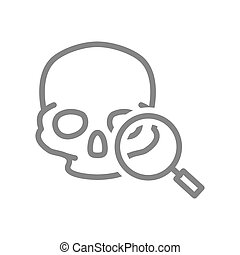 Skull with magnifying glass line icon. Cranium research, bone structure of the head symbol