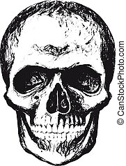 Skull with texture - Vintage hand drawn skull in grunge...