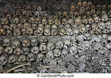Skulls and Bones - Skulls and bones in Opdas Mass Burial...