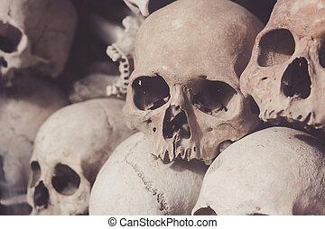 Skulls from a mass grave of Khmer Rouge - Uman skulls of...