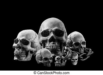 Skulls with a black and white image.
