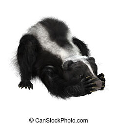 Skunk Illustrations And Clip Art 1662 Skunk Royalty Free