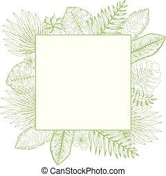 skwer, liście, tropikalny, jasny, zielony, ułożyć