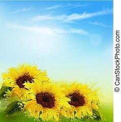sky., 自然, 黄色, ベクトル, ひまわり, 背景, ぼやけ
