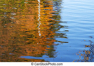 water surface - Sky and leaves reflected in the water ...