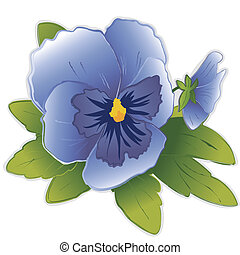 Sky blue Pansy flowers (Viola tricolor hortensis) isolated on white background. EPS8 compatible.