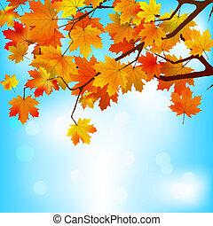 sky., folhas, eps, amarela, luminoso, contra, 8, vermelho
