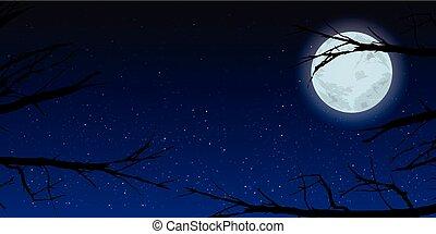 Sky moon trees night. Illustration